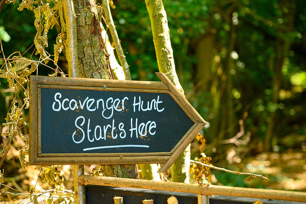 Scavenger,Hunt,This,Way,Signpost,In,Lush,